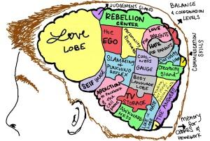 Teen-Brain-jpg